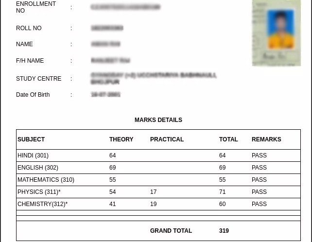 Bihar Board open school result marksheet